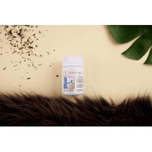 Эффективный противовирусный препарат  «Септивир-фито» - Тибетская Формула